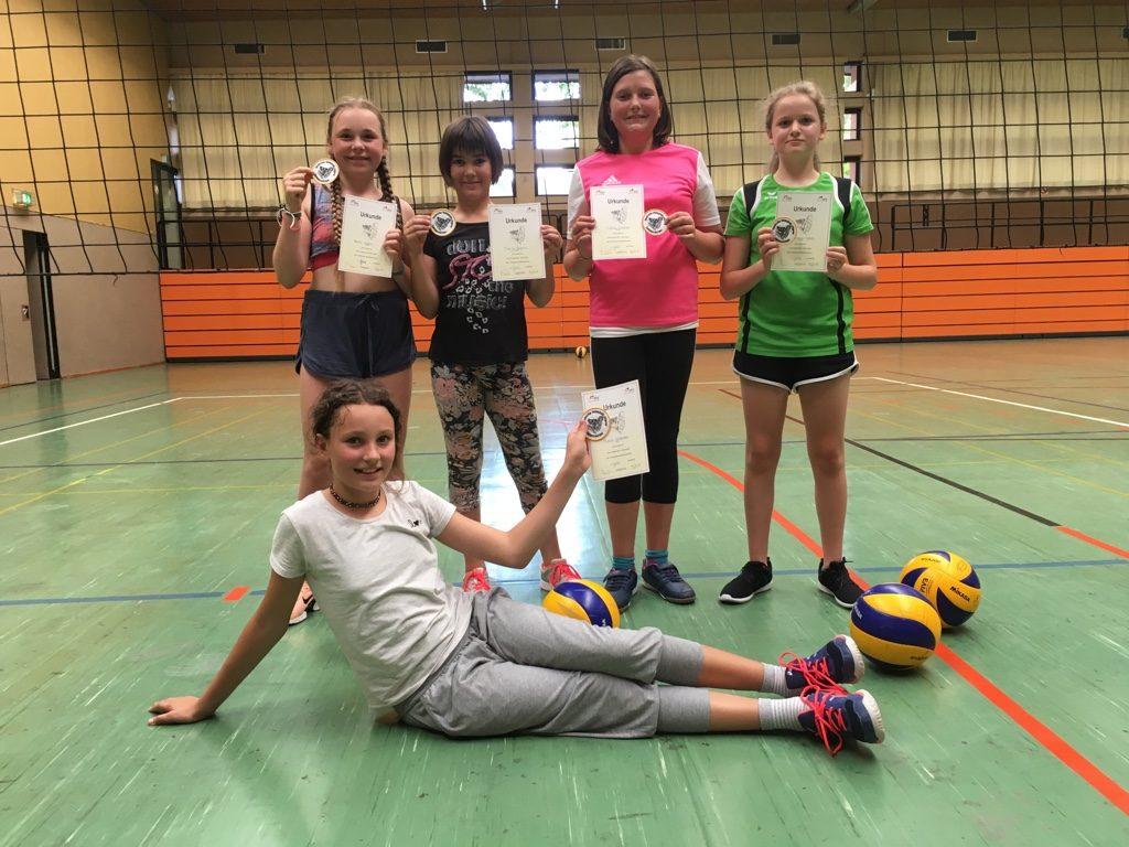 Goldenes Volleyballabzeichen